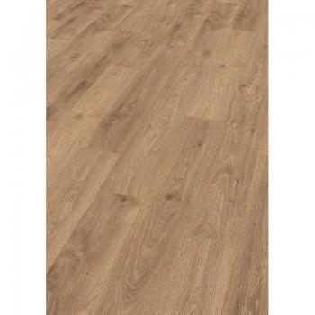 EGGER Basic 8/31 EBL027 Cortina Oak laminált padló