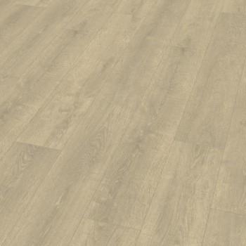 EGGER Basic 8/31 EBL028 Grey Shelby Oak laminált padló